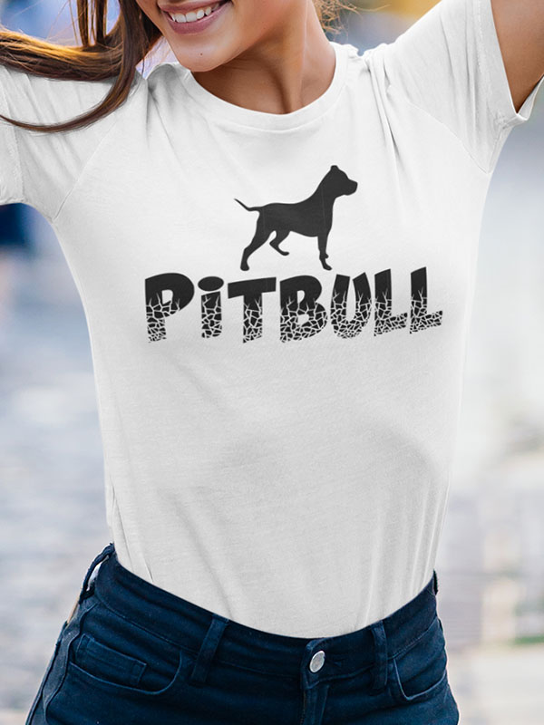 PITBULL CRASH