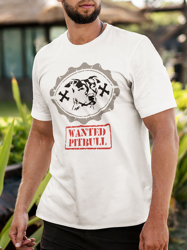 PITBULL WANTED
